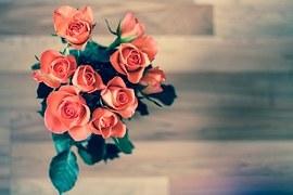 roses-690085__180.jpg