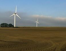 windrader-1167960__180.jpg